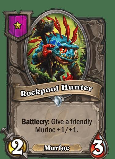 Rockpool Hunter